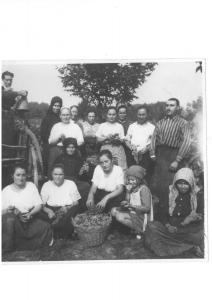szüret 1943 körül